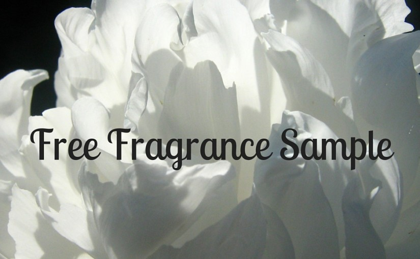 Dolce & Gabbana Fragrance Sample