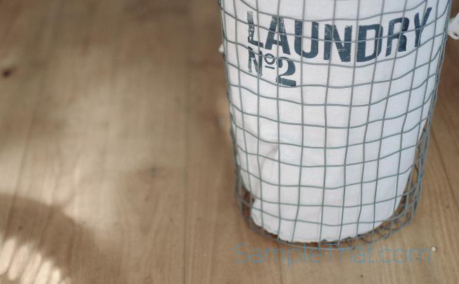 Free Laundry Soap Sample